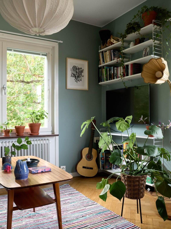 scandinavian-living-room-open-shelves-plants-nordroom